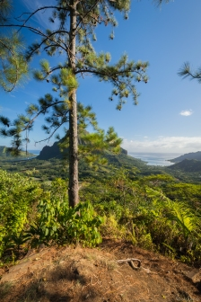 Mo'orea, Polynésie Française