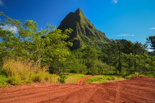 Tahiti-3340.jpg