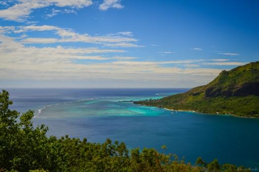 Tahiti-3377.jpg