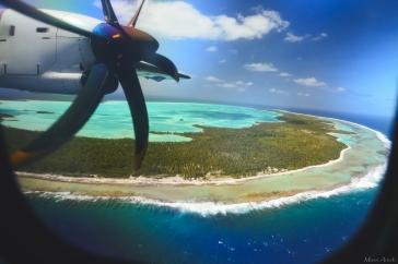Tahiti-4453